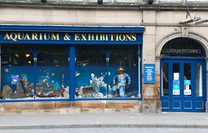 Post image for Matlock Bath Aquarium